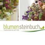 Blumen Steinbruch